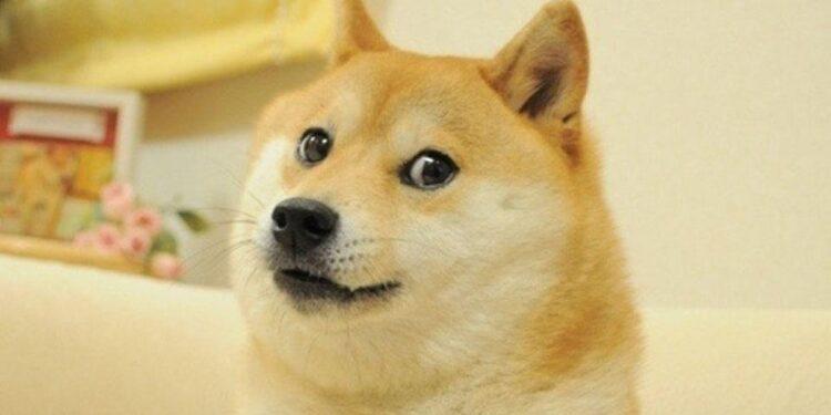 Wow, much value: Dogecoin seals New England real estate ...